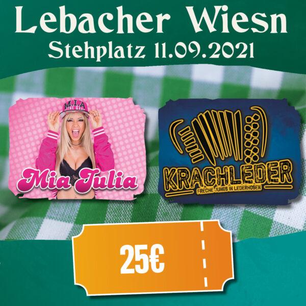 alm-lebacherwiesn-maijulia-krachleder
